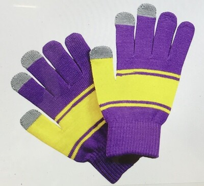 Gloves Purple and Yellow