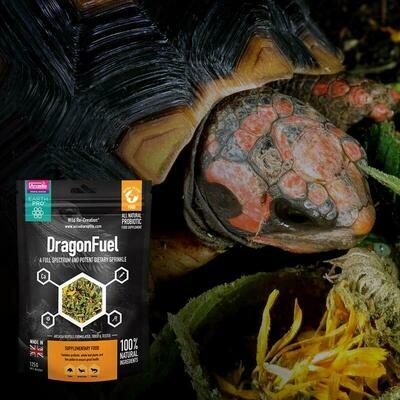 Arcadia Dragon Fuel - Bearded Dragon Supplement 125G