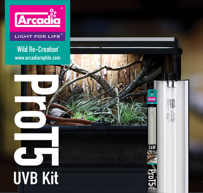 "Arcadia ProT5 UVB Kit 24"""