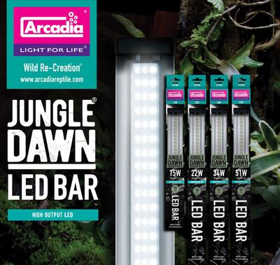 """Jungle Dawn 34"""" 51 Watt"""
