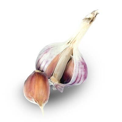 Chrysalis Purple Culinary