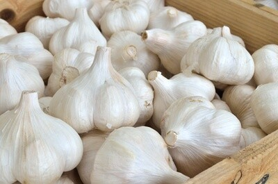 Wholesale Culinary Garlic