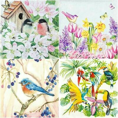 Decoupage Paper Napkins - Bird Print F (4 Sheets)