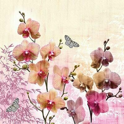 Decoupage Paper Napkins - Orient Orchids 13x13 (1 Sheet)