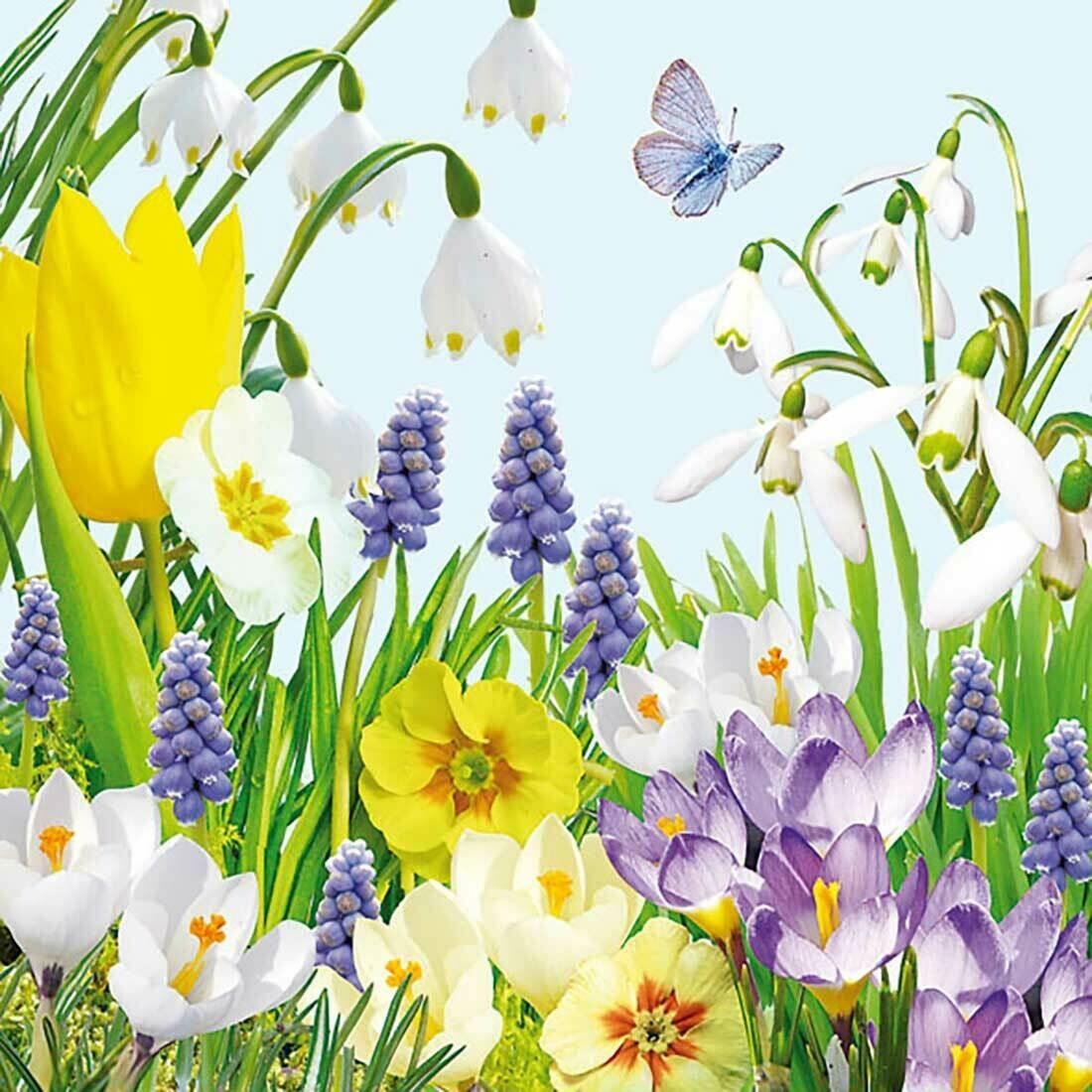 Decoupage Paper Napkins - Floral Spring Time 13x13 (1 Sheet)