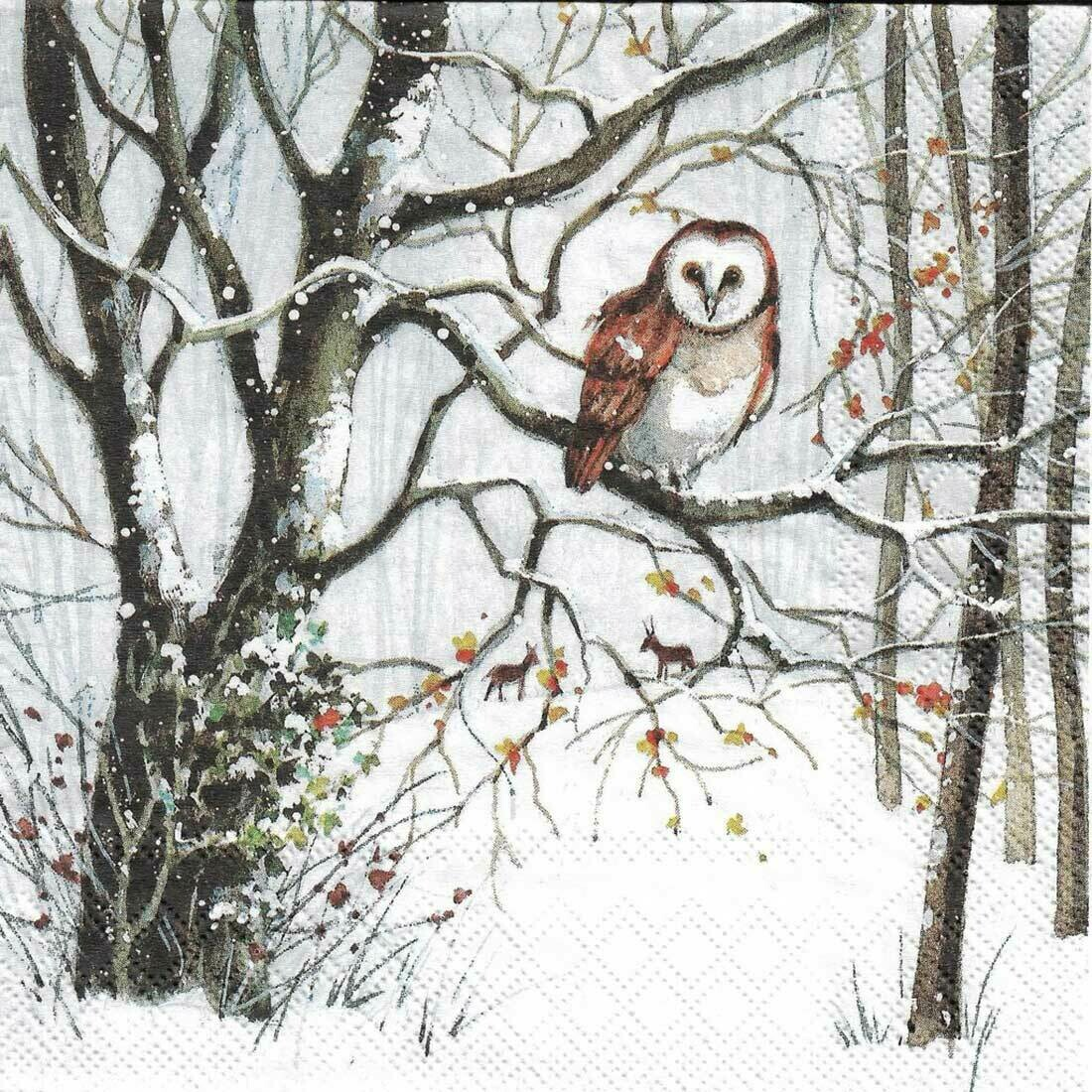 Decoupage Paper Napkins - Owl- 13x13 (1 Sheet)