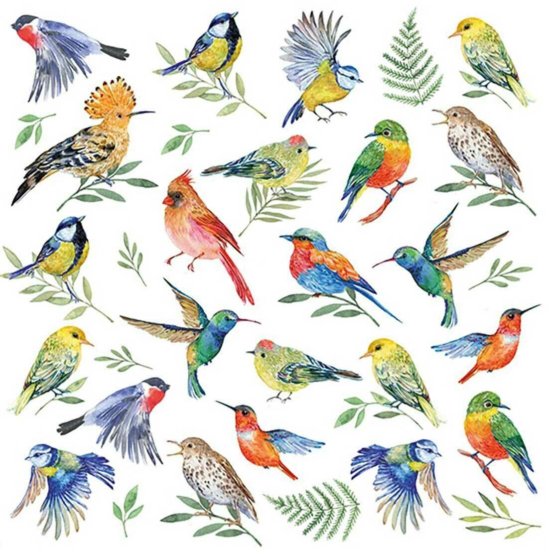 Decoupage Paper Napkins - Birds Vote (1 Sheet)