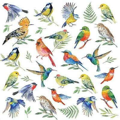 Decoupage Paper Napkins - Birds Vote (1 Sheet)