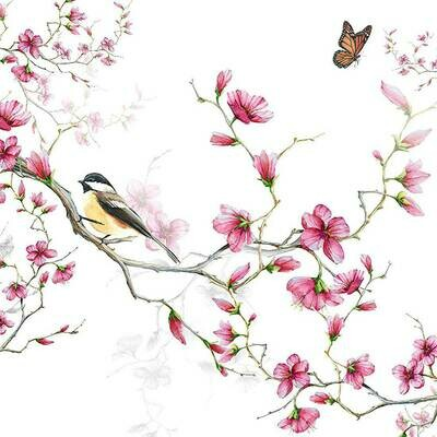 Decoupage Paper Napkins - Bird & Blossom White (1 Sheet)