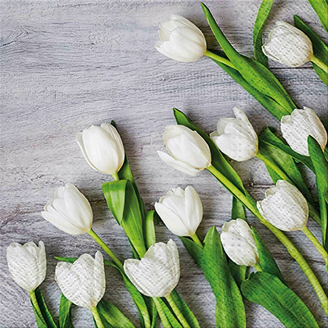 Decoupage Paper Napkins - Floral - White Tulips (1 Sheet)