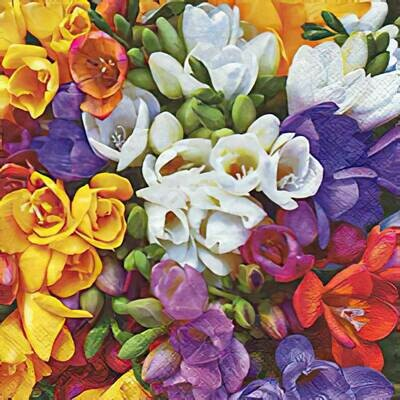 Decoupage Paper Napkins - Floral - Variety of Freesias (1 Sheet)