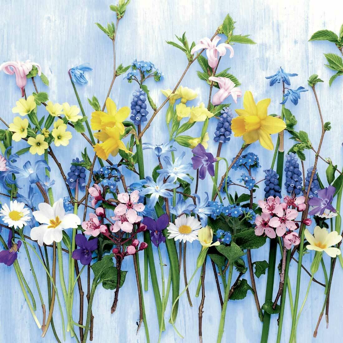 Decoupage Paper Napkins - Floral - Spring Flowers (1 Sheet)
