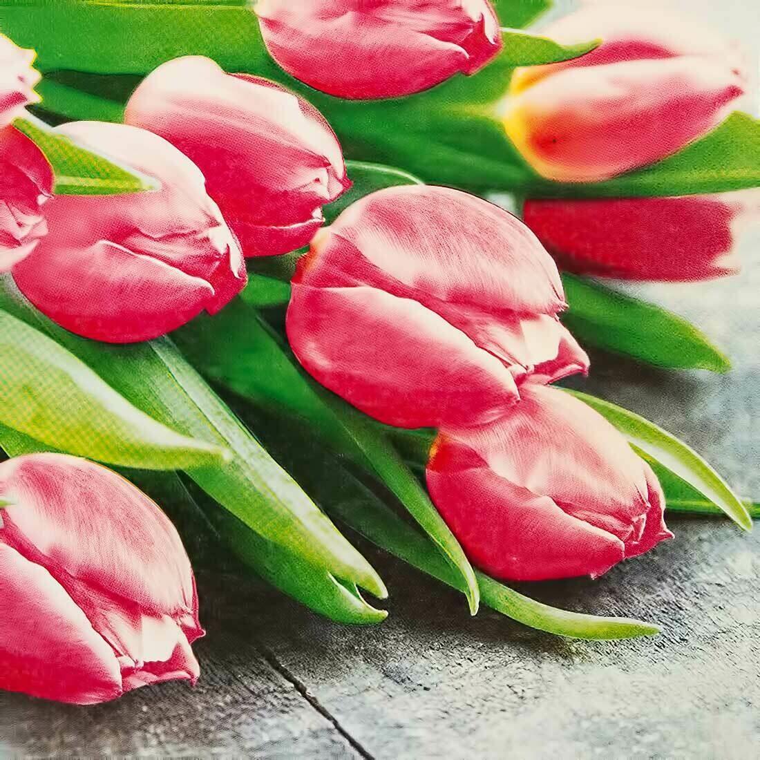 Decoupage Paper Napkins - Floral - Pink Tulips (1 Sheet)