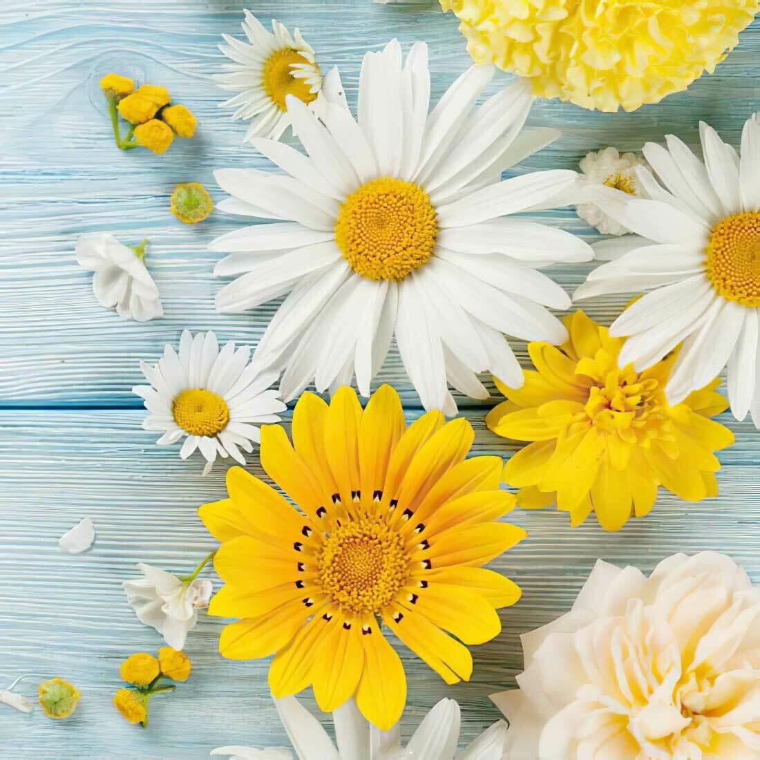 Decoupage Paper Napkins - Floral - Brillantes Flores De Jardin (1 Sheet)