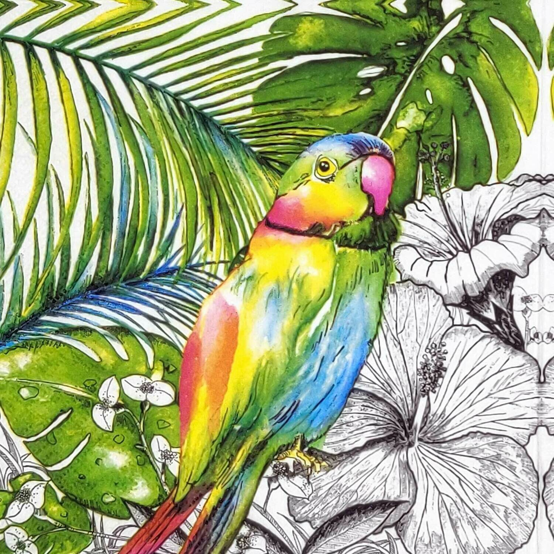 Decoupage Paper Napkins - Bird - Jungle Parrot (1 Sheet)