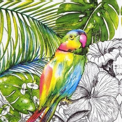 Decoupage Paper Napkins - Bird - Jungle Parrot (1 Sheet)