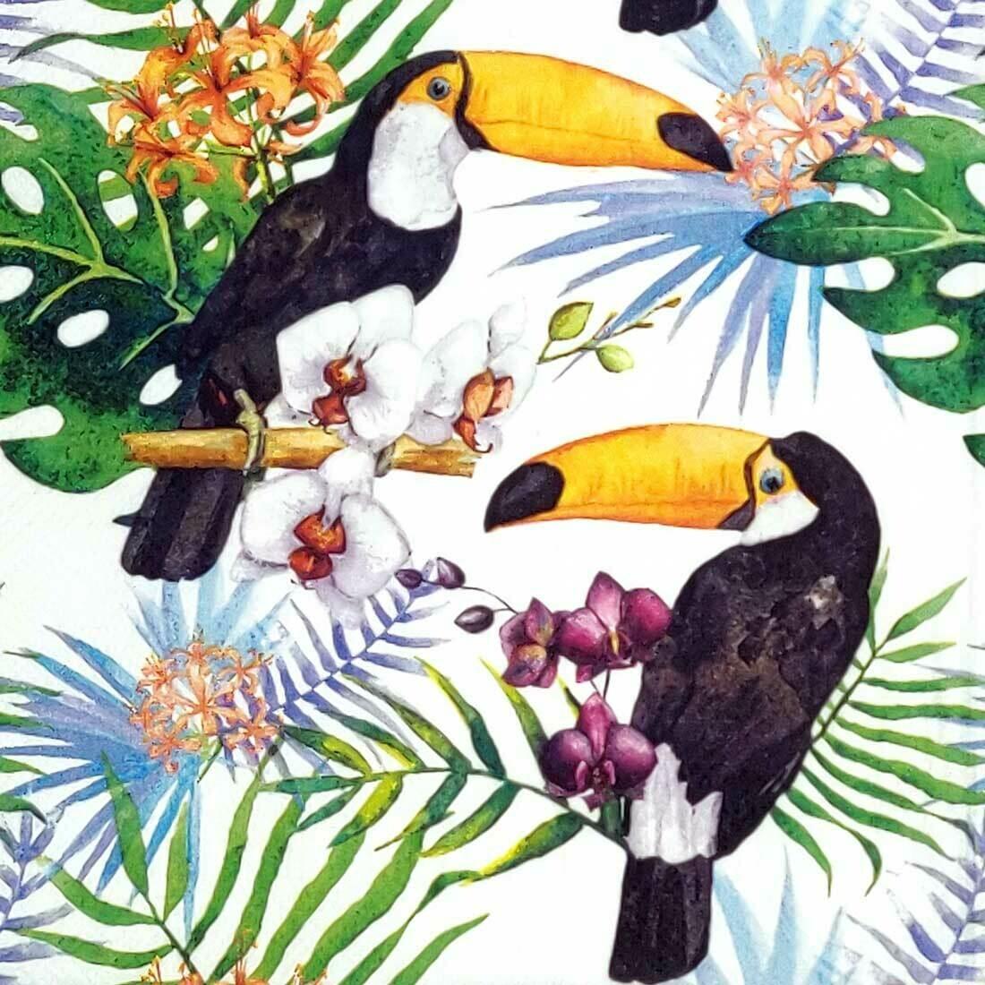 Decoupage Paper Napkins - Bird - Toucans with Jungle Plants (1 Sheet)