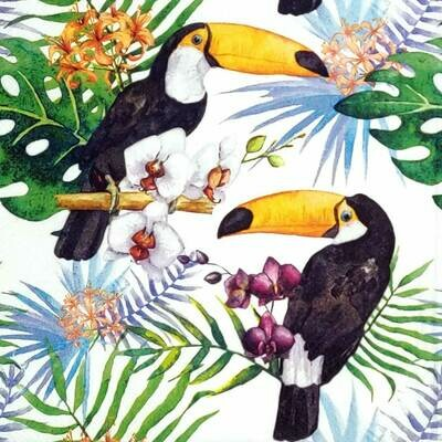 Decoupage Paper Napkins - Bird - Toucans with Jungle Plants (1 Sheet)