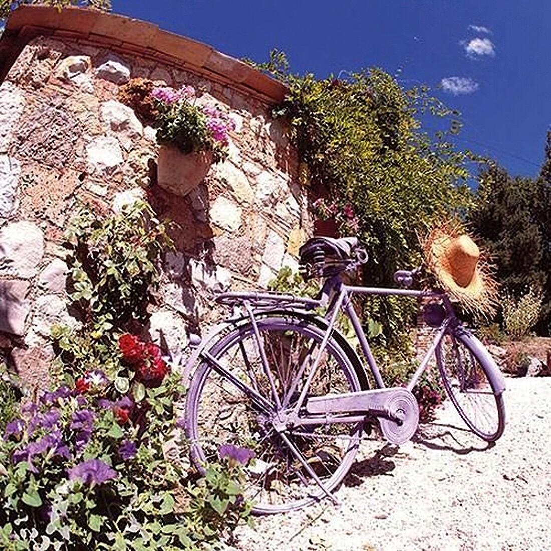 Decoupage Paper Napkins -Bike in Province 13x13 (1 Sheet)
