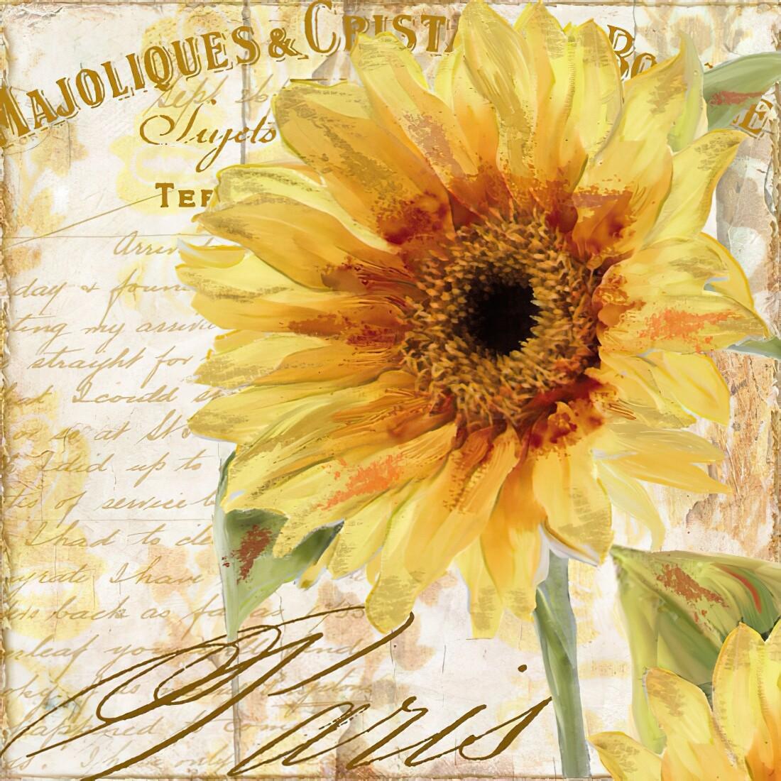 Decoupage Paper Napkins - Floral - Tournesol - 13x13 (1 Sheet)