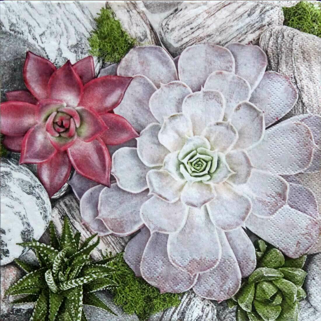 Decoupage Paper Napkins - Floral - Succulent Plants and Stones (1 Sheet)
