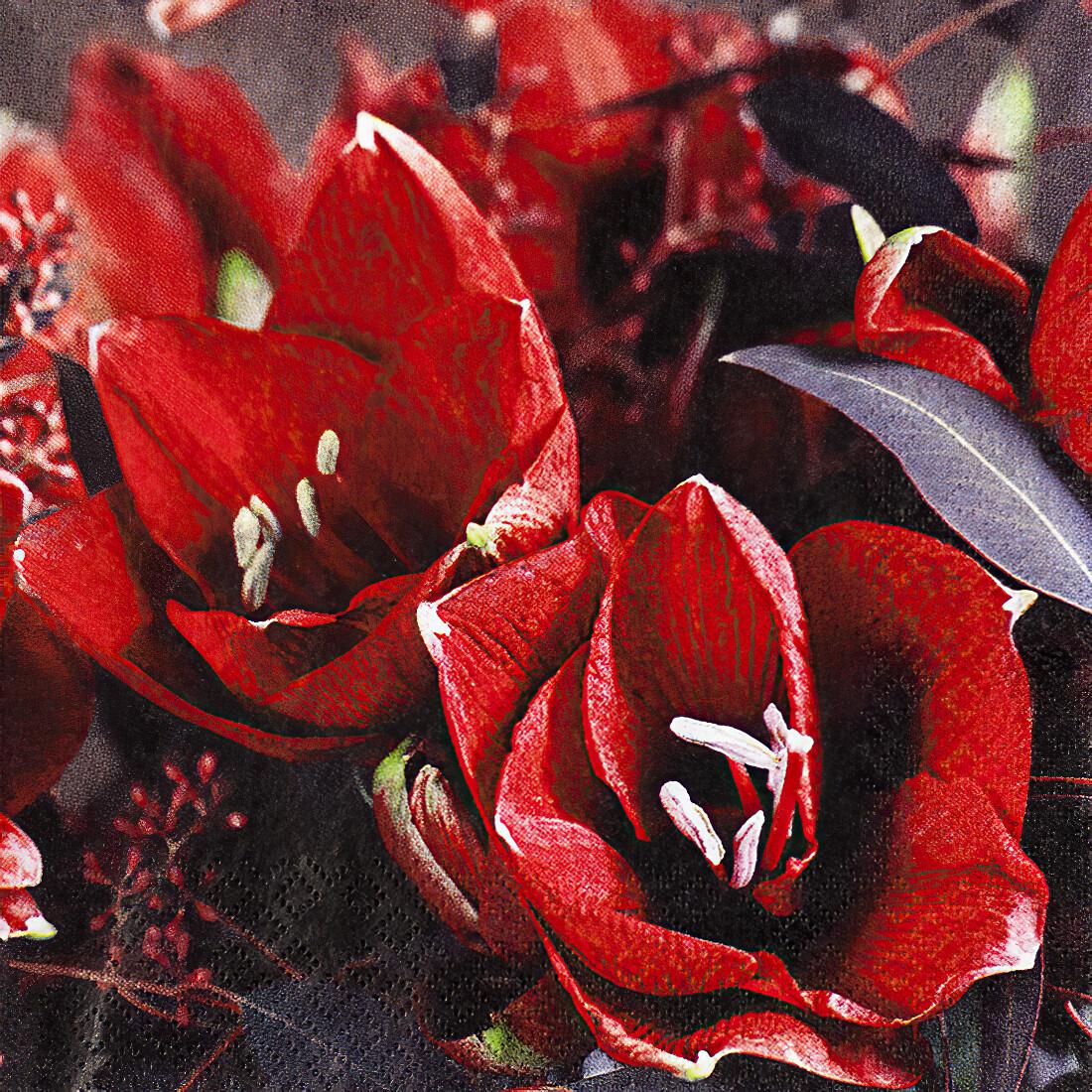 Decoupage Paper Napkins - Floral - Classic Amaryllis (1 Sheet)