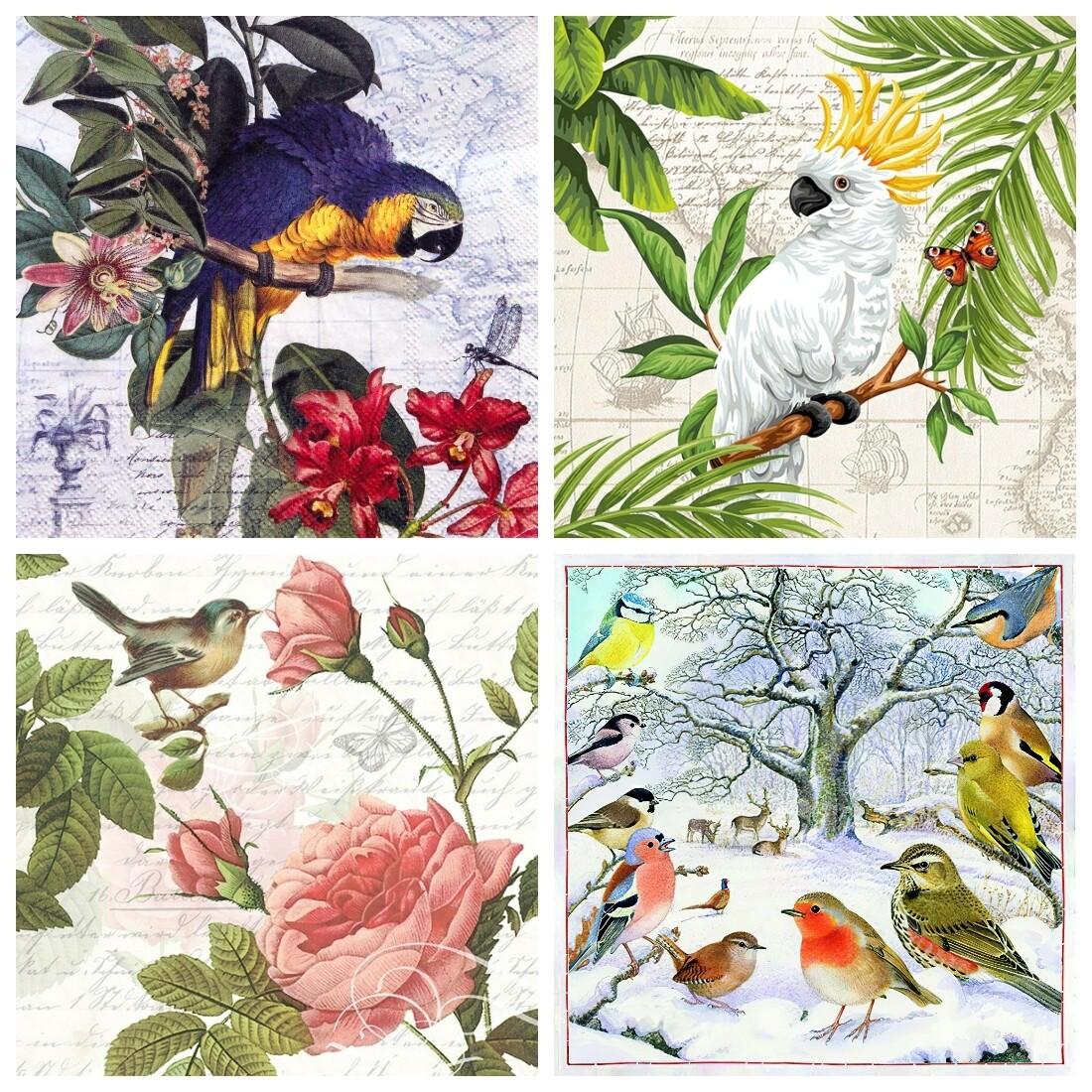 Decoupage Paper Napkins - Bird 12 13x13 (4 Sheets)