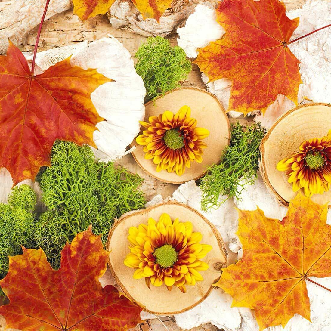 Decoupage Paper Napkins - Floral - Autumn Composition (1 Sheet)
