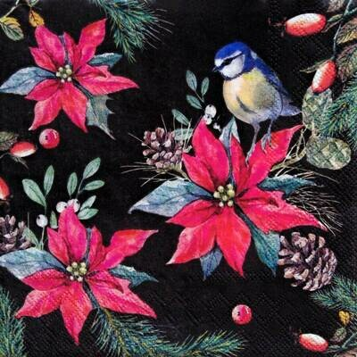 Decoupage Paper Napkins - Bird - Bird On Poinsettia Black (1 Sheet)