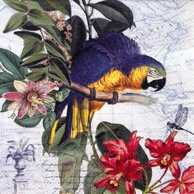 Decoupage Paper Napkins - Bird - Ara (1 Sheet)