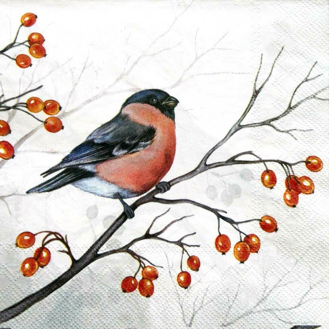 Decoupage Paper Napkins - Bird - Dreaming Winter Bird (1 Sheet)