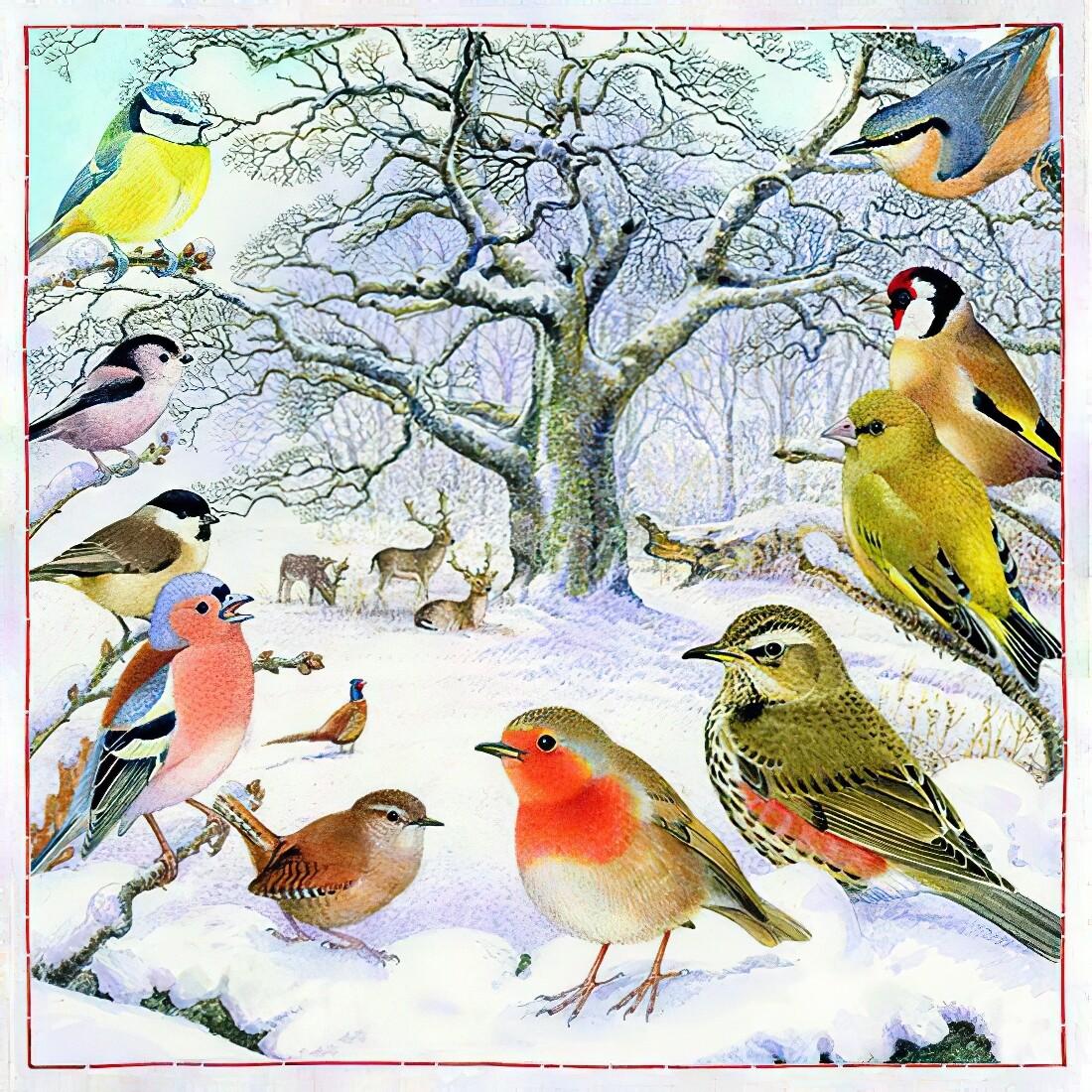 Decoupage Paper Napkins - Bird - Bird Meeting (1 Sheet)