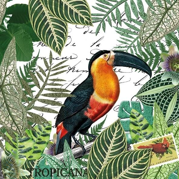Decoupage Paper Napkins - Bird - Tropicana (1 Sheet)