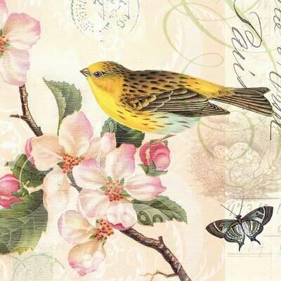 Decoupage Paper Napkins - Bird - Bird And Blossom(1 Sheet)