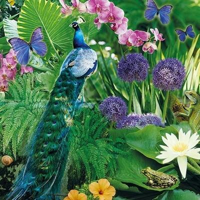 Decoupage Paper Napkins - Bird - Peacock (1 Sheet)