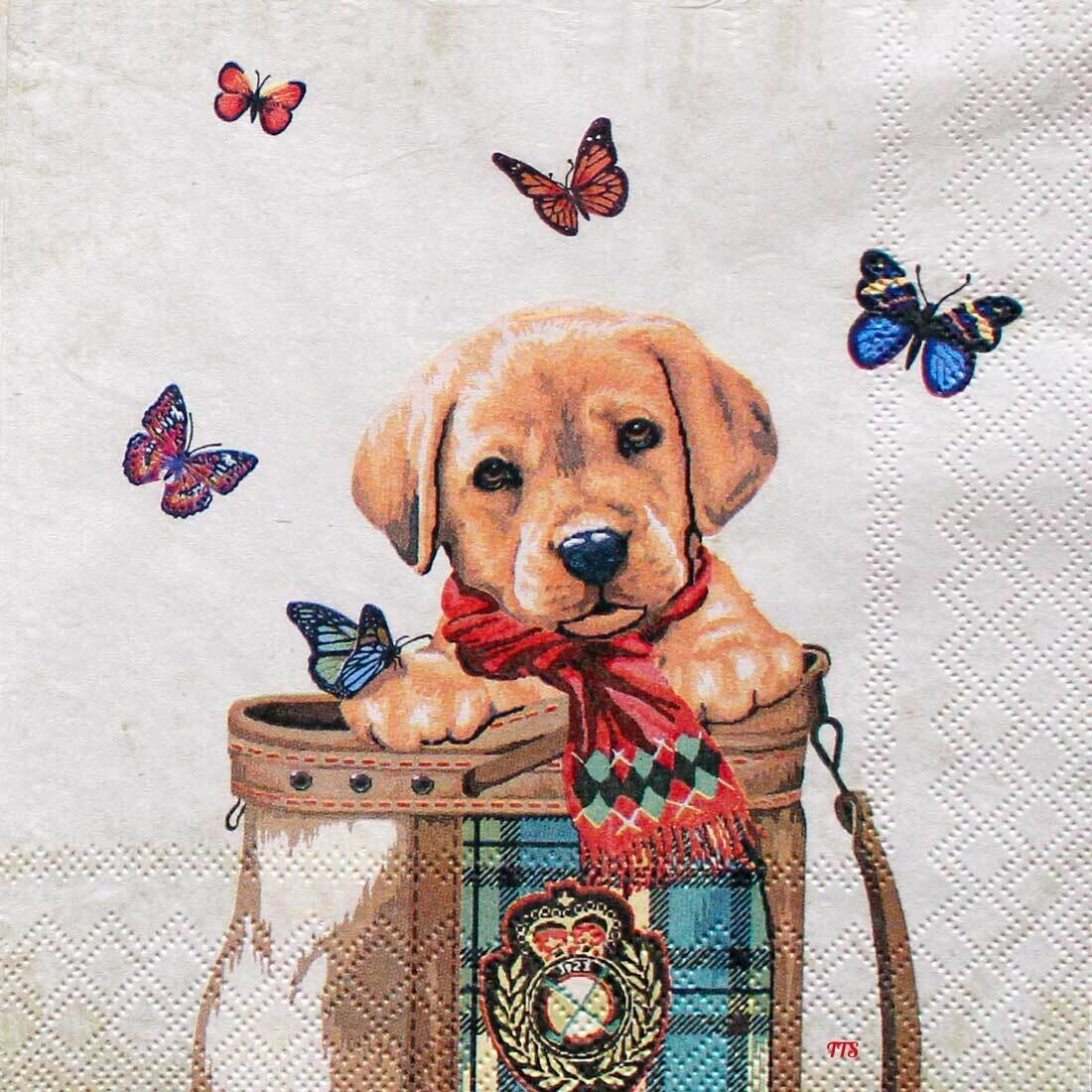 Decoupage Paper Napkins - Animal - Dog and Butterflies - Buddy (1 Sheet)