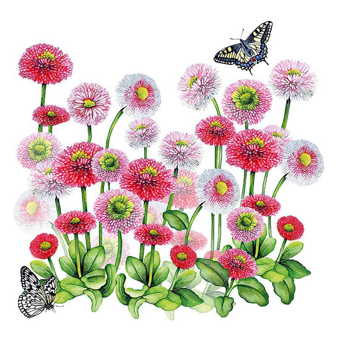 Decoupage Paper Napkins - Floral and Butterflies - Bellis (1 Sheet)
