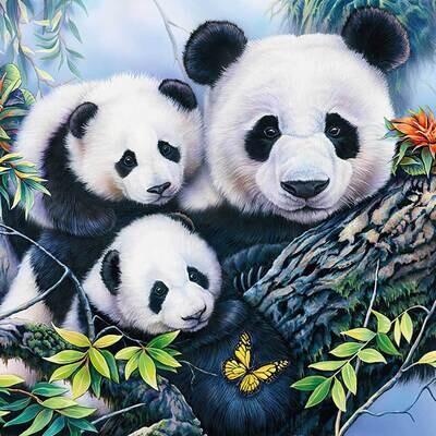 Decoupage Paper Napkins - Animals - Panda
