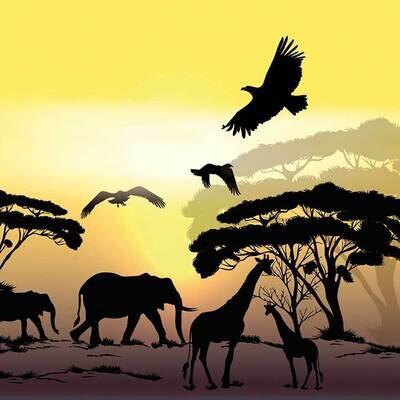 Decoupage Paper Napkins - Animals - African Safari (1 Sheet)