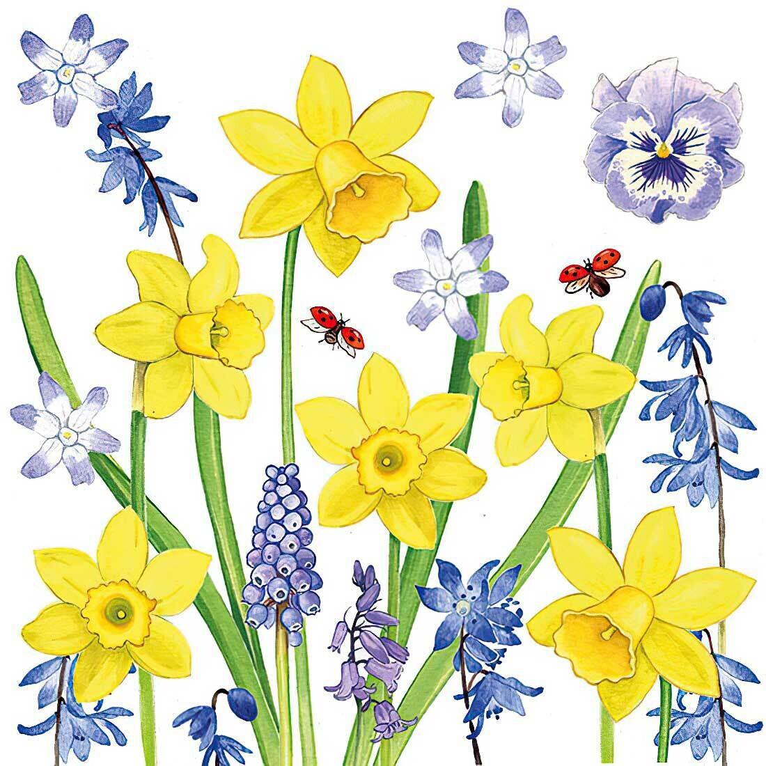 Decoupage Paper Napkins - Floral - Narcissus Love (1 Sheet)