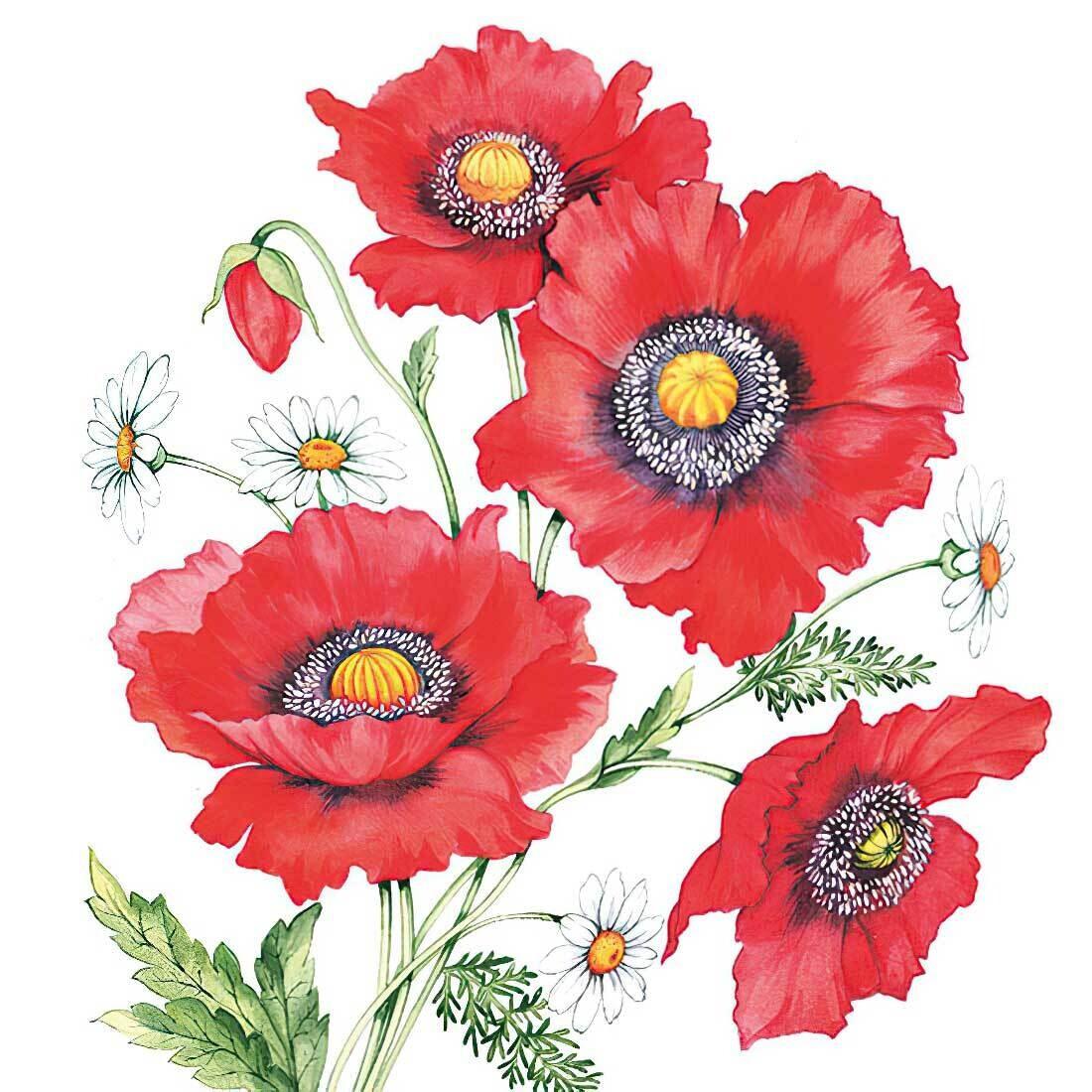 Decoupage Paper Napkins - Floral - Poppy Scene (1 Sheet)