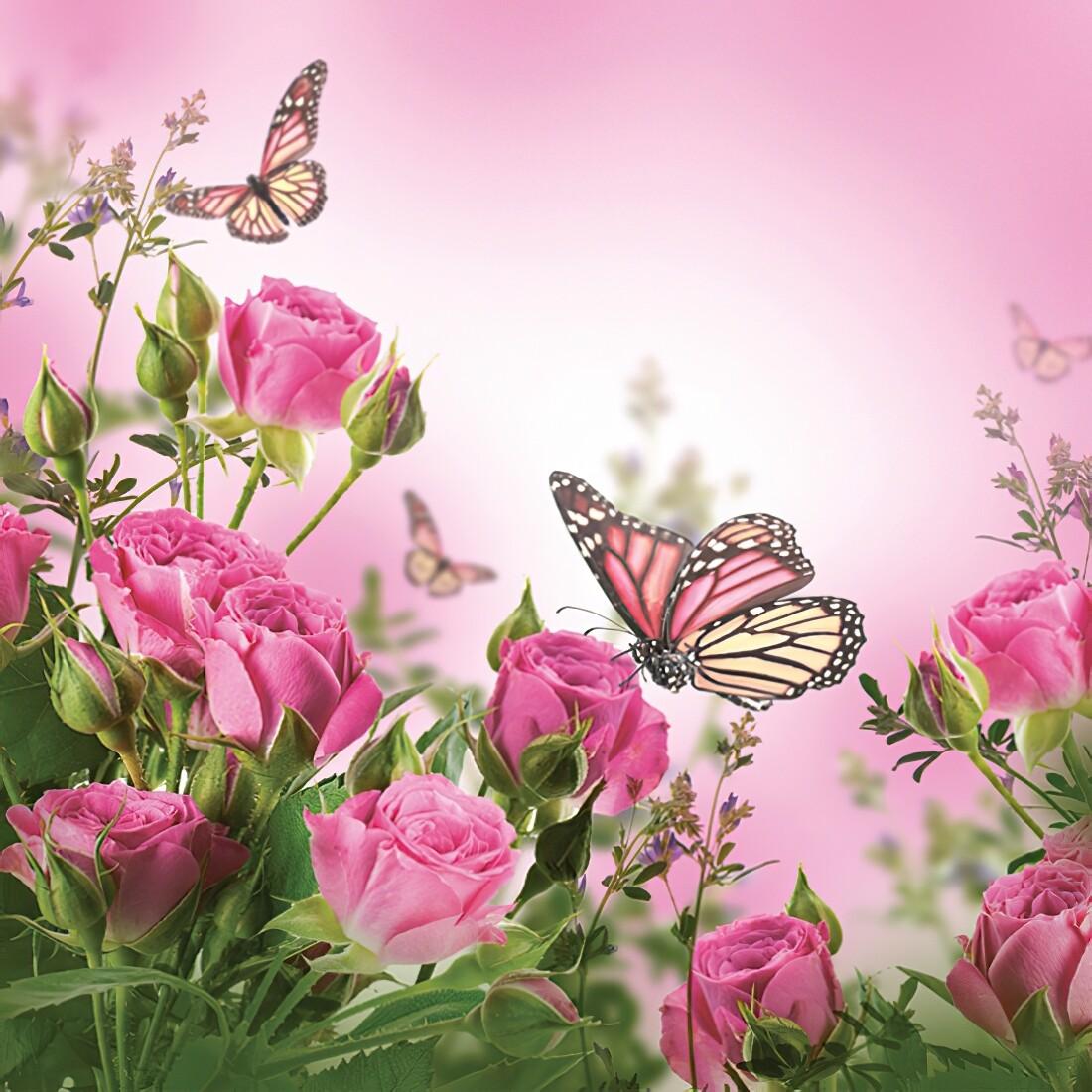 Decoupage Paper Napkins - Butterflies -   Roses & Butterflies