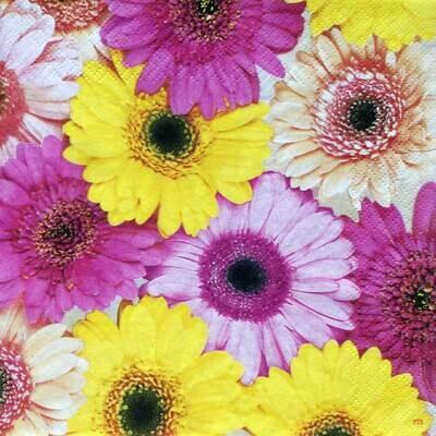Decoupage Paper Napkins - Floral - Colourful Gerberas (1 Sheet)