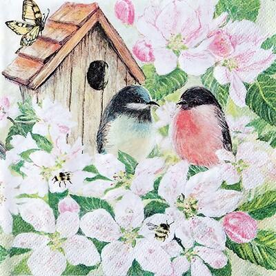 Decoupage Paper Napkins - Bird - Birds and Blossom (1 Sheet)