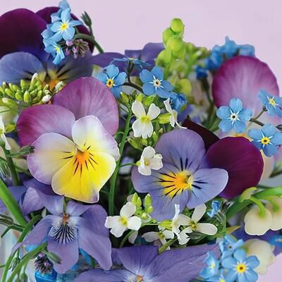 Decoupage Paper Napkins - Floral - Violets & Forget Me Not (1 Sheet)