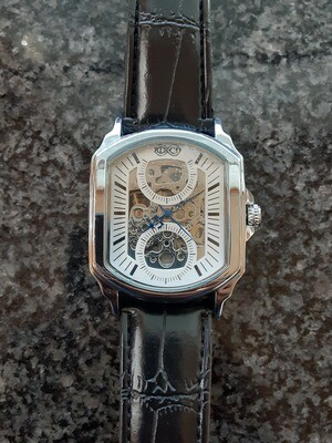 White Silver Mens Automatic Mechanical Watches Luxury Full Steel Men Gold Skeleton Male S
