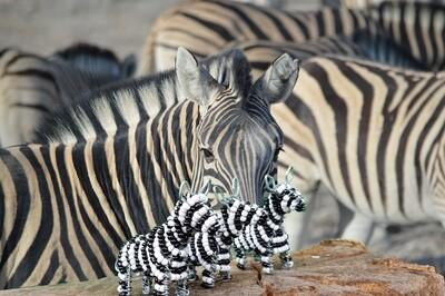 Kleine Kunstwerke aus Namibia - Zebra