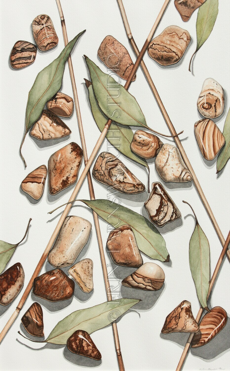 """""""Reeds, Leaves and Picture Jasper"""" 8.5x11 print"""
