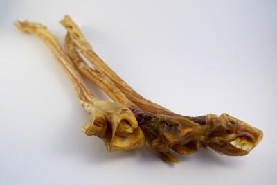 Ostrich Long Tendon
