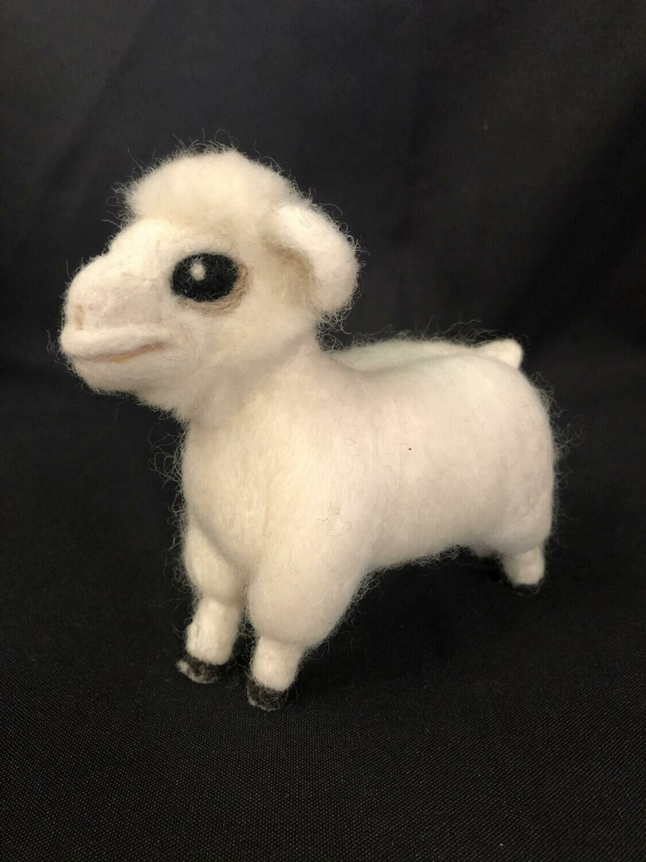 Basilica Sheep